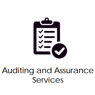 auditing and assets